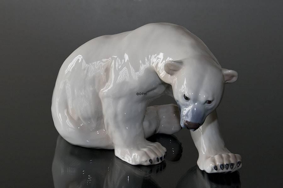 hvor lever en isbjørn