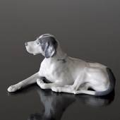 Liggende Pointer, Royal Copenhagen hundefigur nr. 1453-1635